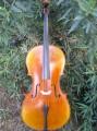 Leo Albani Cello