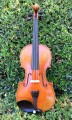 Scott Cao Scarampella Copy Violin 2014