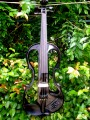 Carlo Giordano Electric Violin Outfit with Free Shipping