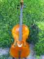 Strad Cello By Leo Albany