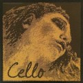 4/4 Evah Pirazzi Cello Gold D String