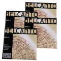 Belcanto Orchestral Double Bass String Set
