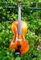 Strad Replica Violin Outfit with Free Shipping