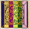 Passione Violin Loop E end