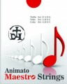 Maestro Strings A  for Double Bass: Pls Choose Size