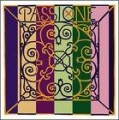 Passione Violin G String