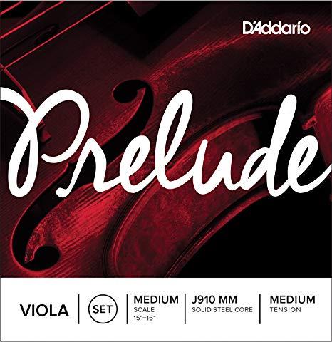 prelude-viola-strings.jpg