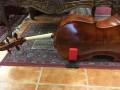 Cello Gard Foldable with Bag