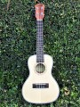 Concert Advanced Ukulele 23 inch