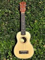 Soprano Advanced Deviser 21-50 Ukulele 21 inch