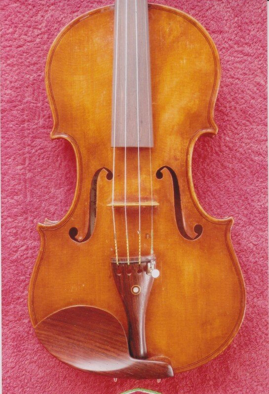 professional high end violins for sale violin shop viola cello doublebass