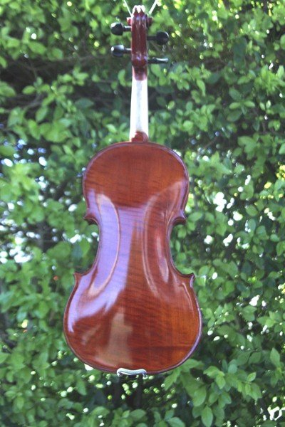 capriccio violin back