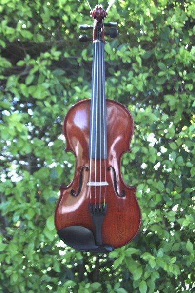 capriccio violin front