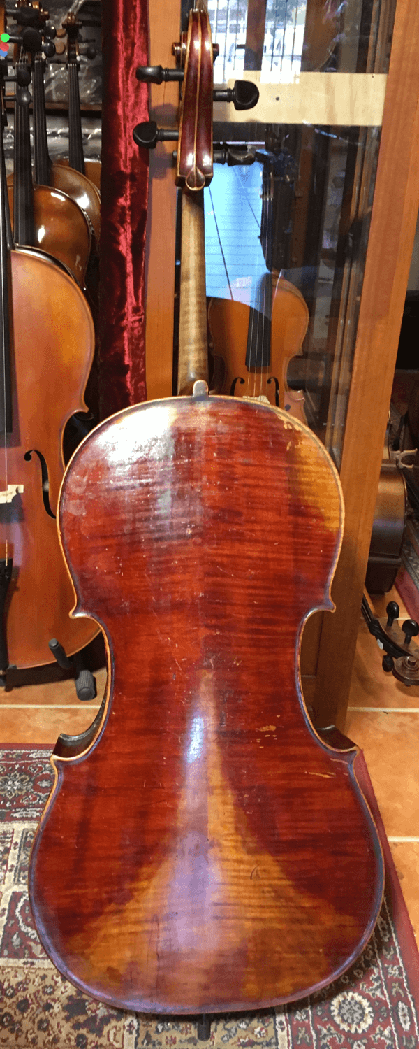 Back of cello