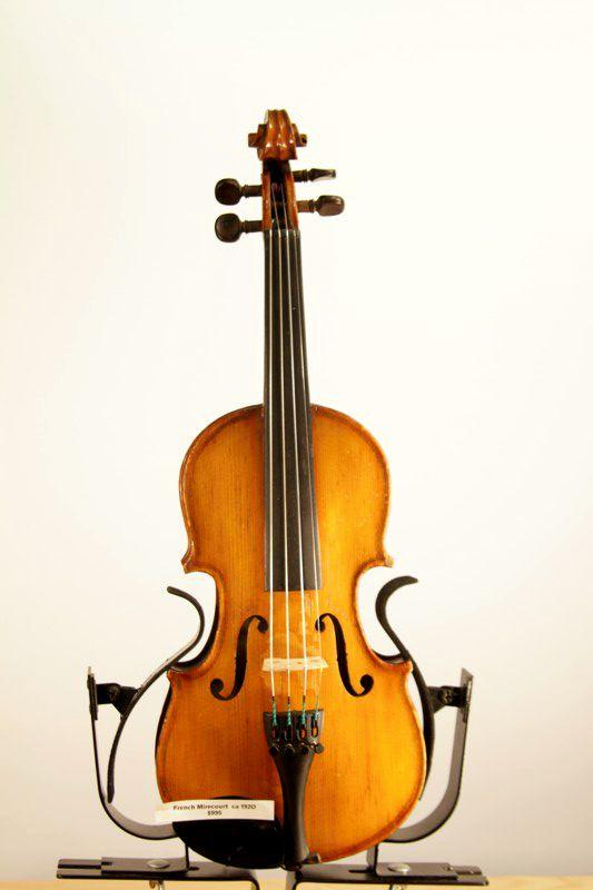 French Viola 15 inches