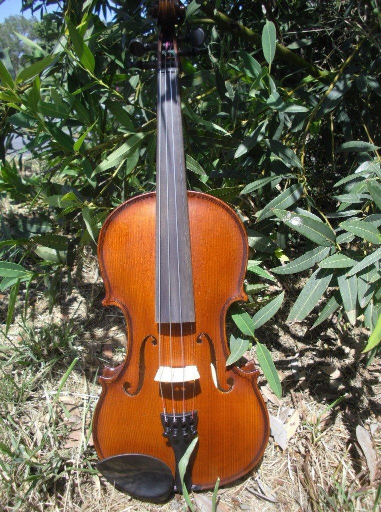gliga 3 violin