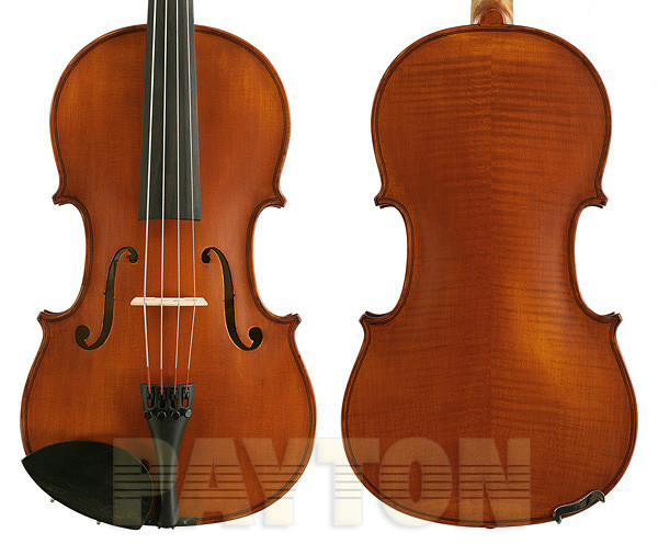 Gliga 2 Viola