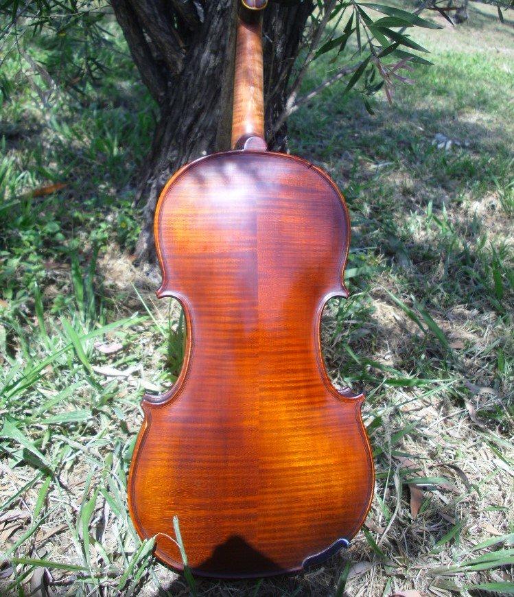 gliga vasile violin