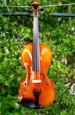Cantabile Violin