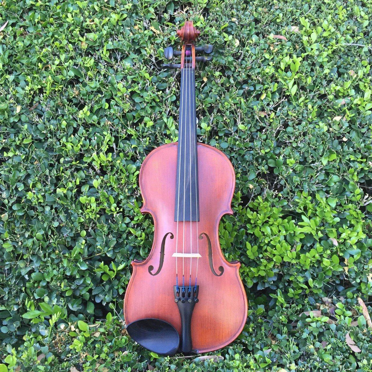 Gliga 1 Violin